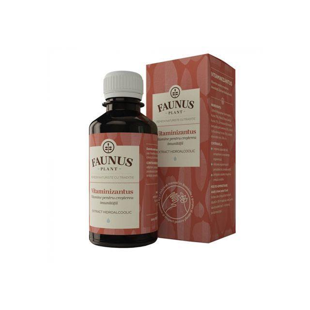 Tinctura Vitaminizantus 200ml, Faunus Plant