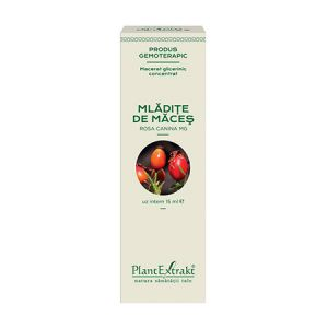 Extract concentrat din mladite de Maces 15 ml, PlantExtrakt